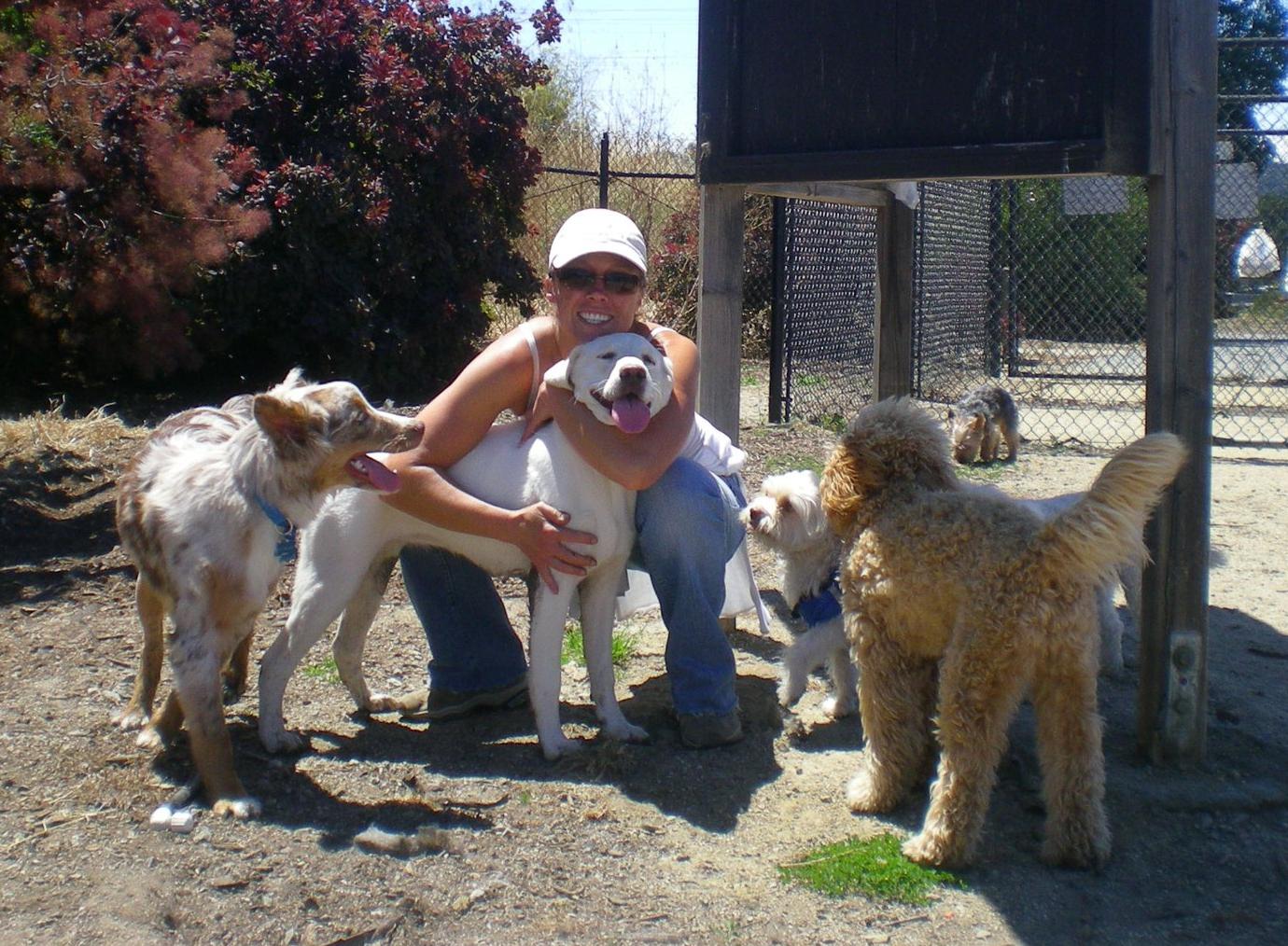 Burlingame Dog Park1